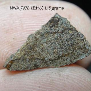 NWA 7976 (EH6) 1.15 grams