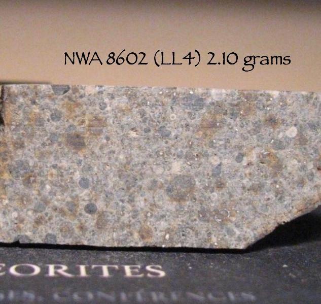 NWA 8602 (LL4) 2.10 grams