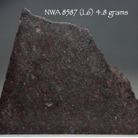 NWA 8587 (L6) 4.8 grams