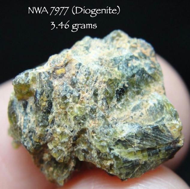 NWA 7977 (Diogenite) 3.46 grams
