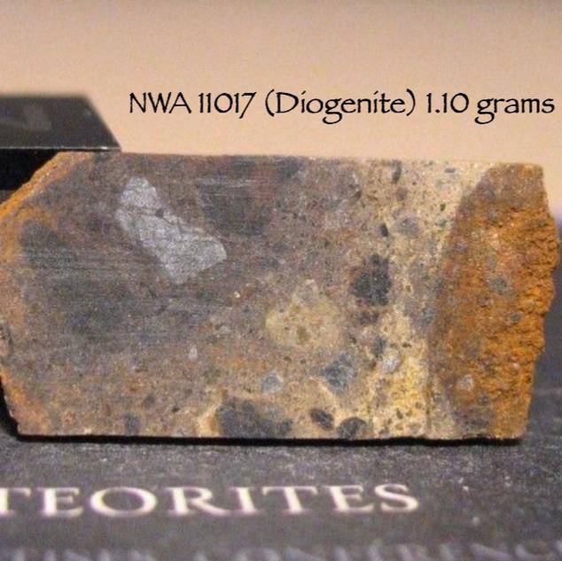 NWA 11017 (Diogenite) 1.10 grams