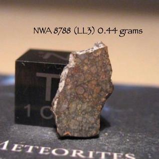 NWA 8788 (LL3) 0.44 grams