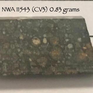 NWA 11543 (CV3) 0.83 grams