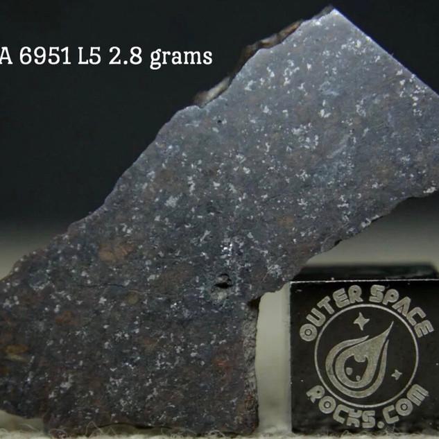 NWA 6951 L5 2.8 grams