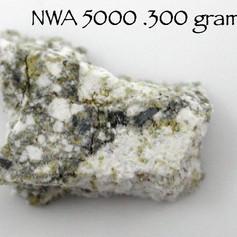 NWA 5000 .300 grams