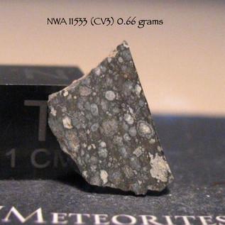 NWA 11533 (CV3) 0.66 grams