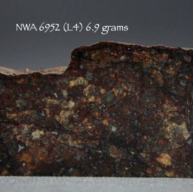 NWA 6952 (L4) 6.9 grams