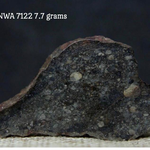 NWA 7122 L4 7.7 grams