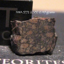 NWA 5772 (CV3) 0.49 grams