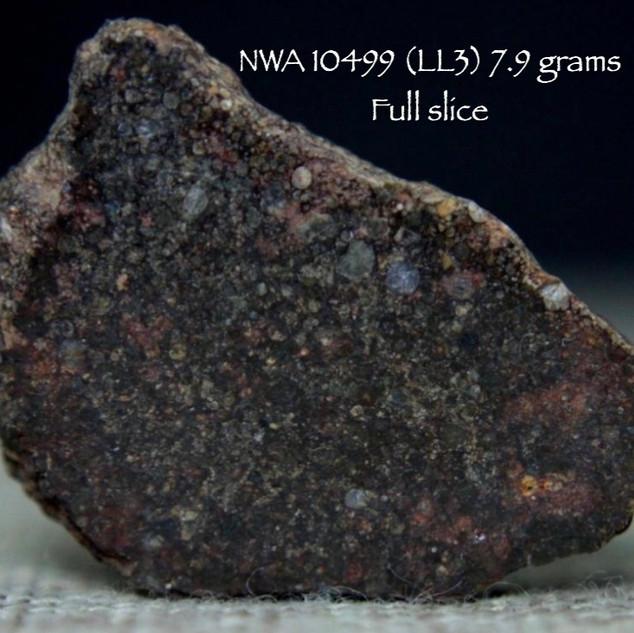 NWA 10499 (LL3) 7.9 grams