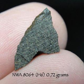 NWA 8064 (H6) 0.72 grams