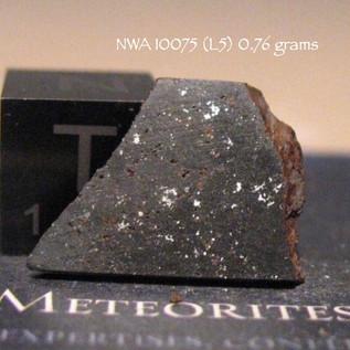 NWA 10075 (L5) 0.76 grams