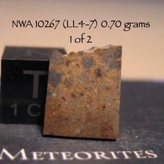NWA 10267 0.70 grams