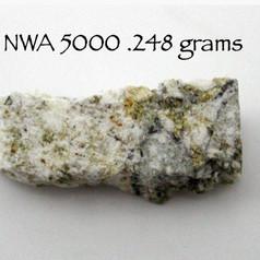 NWA 5000 .248 grams