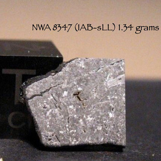 NWA 8347 (IAB-sLL) 1.34 grams