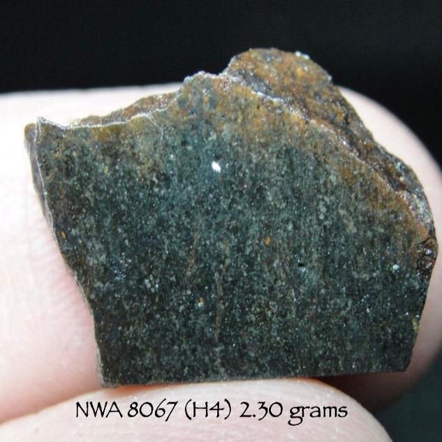 NWA 8067 (H4) 2.30 grams
