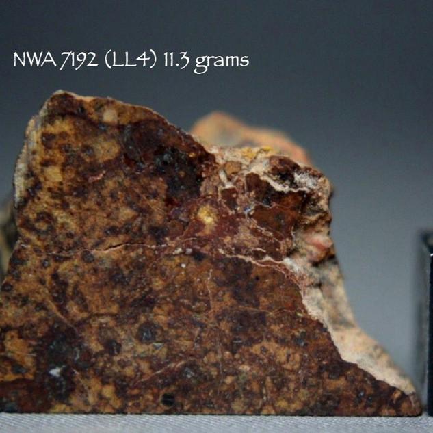 NWA 7192 (LL4) 11.3 grams