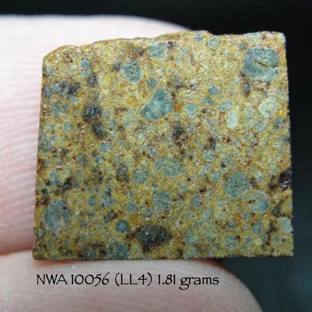 NWA 10056 (LL4) 1.81 grams