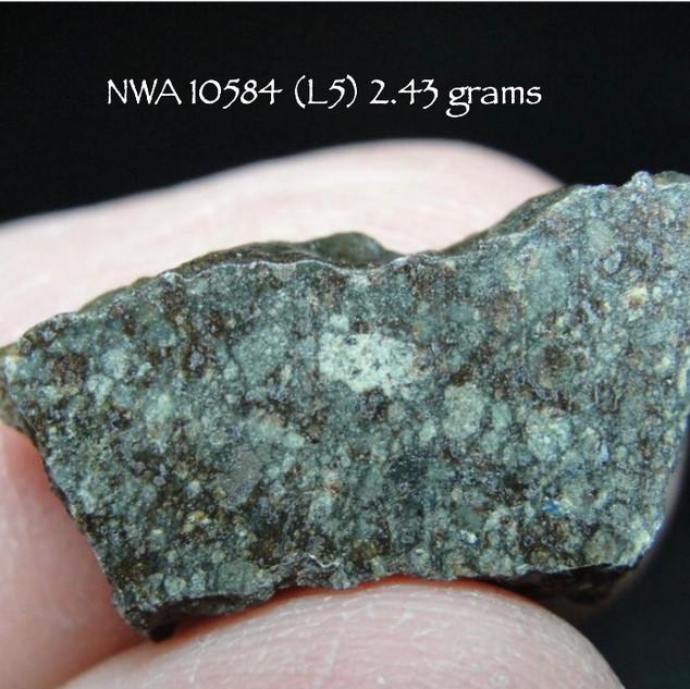 NWA 10584 (L5) 2.43 grams