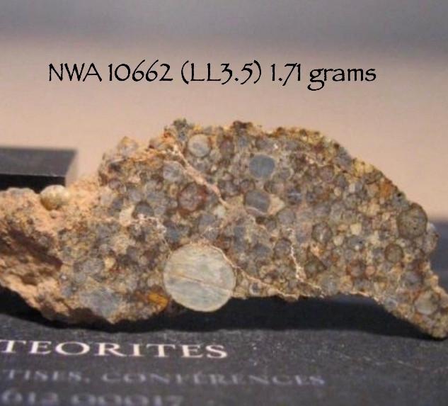NWA 10662 (LL3.5) 1.71 grams