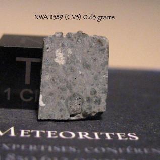 NWA 11589 (CV3) 0.63 grams