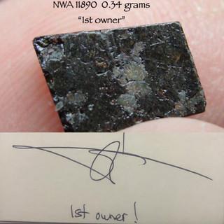 NWA 11890  0.34 grams
