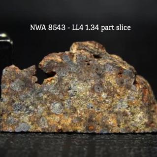 NWA 8543 LL4 1.34 grams