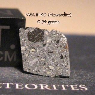NWA 11490 (Howardite) 0.54 grams