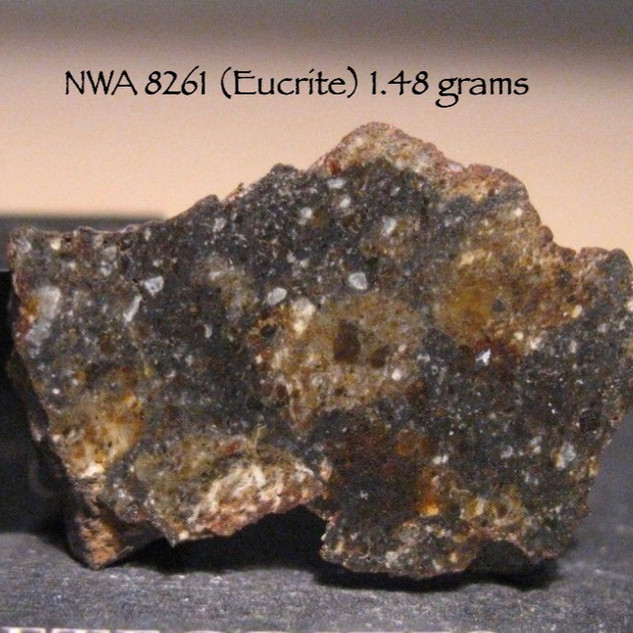 NWA 8261 (Eucrite) 1.48 grams