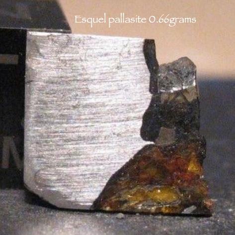 Esquel Pallasite 0.66 grams