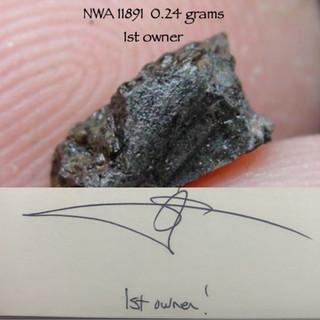 NWA 11891  0.24 grams