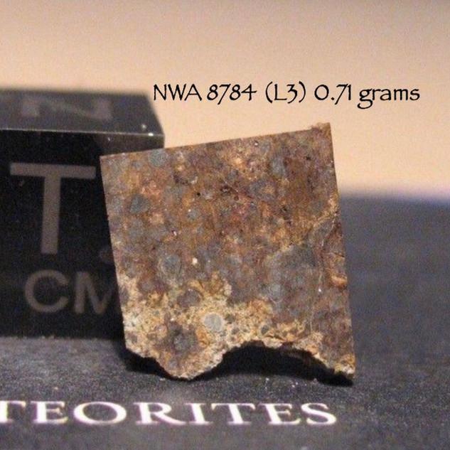 NWA 8784 (L3) 0.71 grams