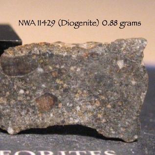 NWA 11429 (Diogenite) 0.88 grams