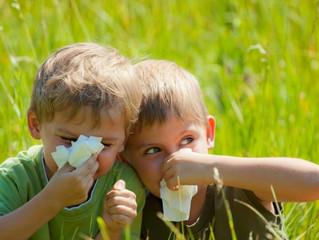 Allergia, 3 strategie da adottare per godersi la bella stagione.