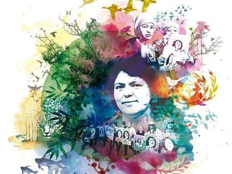 Causa Berta Cáceres: Observaciones preliminares - Audiencia proposición de pruebas de David Castillo