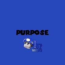 Purpose Track Art.png