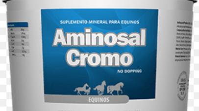 Suplemento para Equinos Aminosal Cromo 5kg - Lavizoo