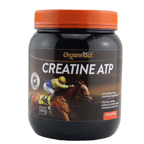 Suplemento para Equinos Creatina ATP 500g - Organnact