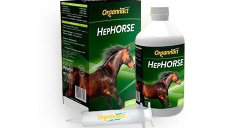 Suplemento para Equinos HepHorse 500ml - Organnact