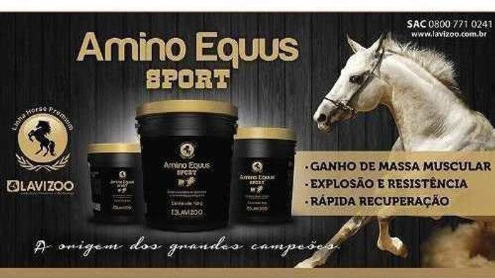 Amino Equus Sport 2,5kg Lavizoo - Suplemento para Cavalo linha Premium