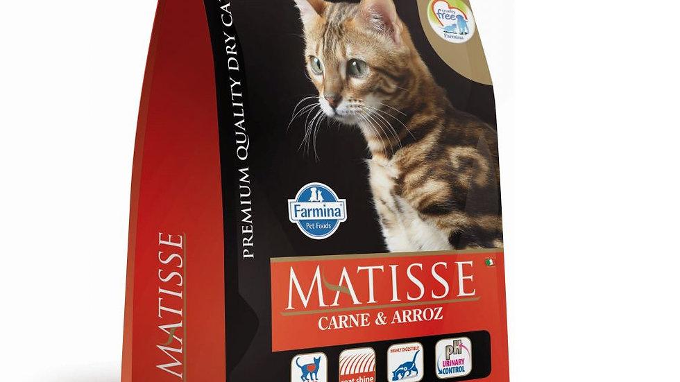 Ração Gatos Adultos sabor Carne e Arroz 2kg - Matisse