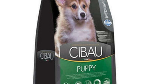 Ração Cães Filhotes de Raças Médias Puppy Medium 15kg - Cibau