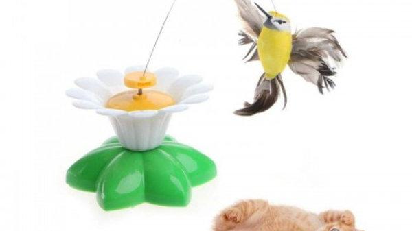 Brinquedo Gatos Superpop Bird - Puppets