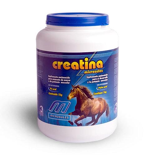 Creatina para Equinos 500gr - Microsules