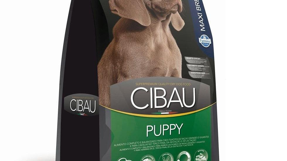 Ração Cães Filhotes de Raças Grandes Puppy Maxi 15kg - Cibau