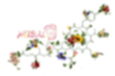 herbal logo.png