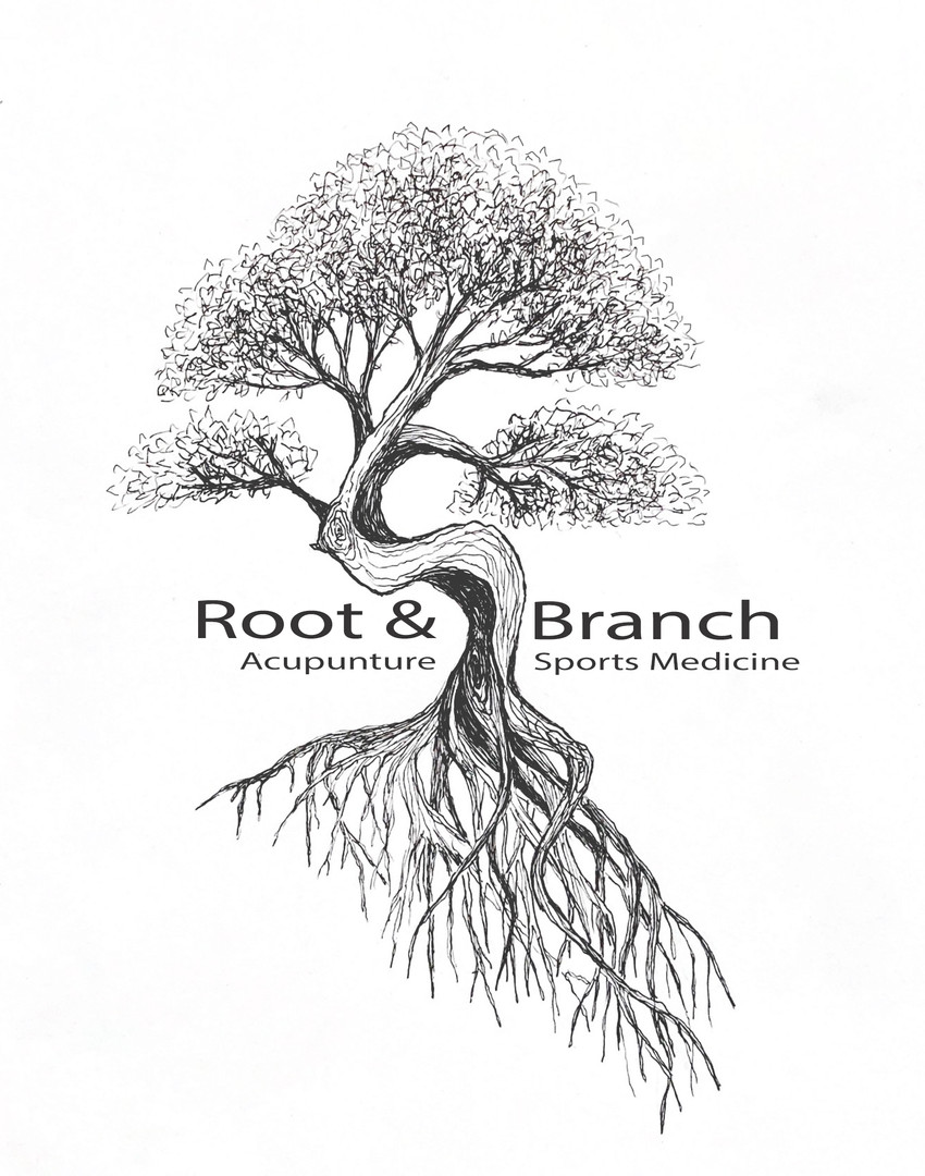 Root & Branch