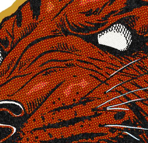 tiger-03.png