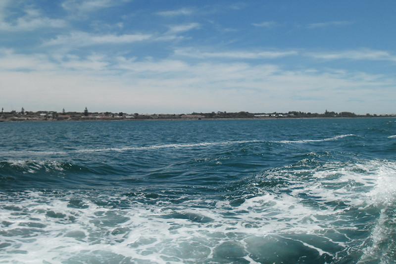 جزيرة روبن كما تبدو من العبارة قبل الوصول الى مرفأ خليج موراى