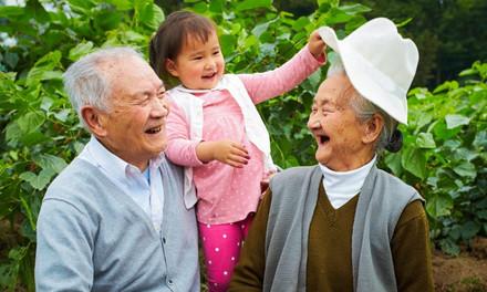 4 Tips for Lifelong Happiness